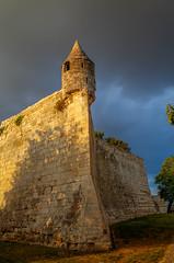 Maillezais, le mur d'enceinte (patrick Thiaudiere Thanks for + 800 000 views) Tags: mur monument abbaye fortification proue enceinte tourelle