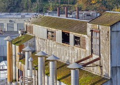 Blue Heron Paper Mill 3420 B (jim.choate59) Tags: abandoned decay factory deserted blueheronpapermill oregoncity jchoate willamette papermill industrial rust moss tinroof smokestack roof rot on1pics