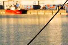 19402.jpg (Ferchu65) Tags: viajesysalidas espaa evento santoa cantabria santoaverano europa julio marcantbrico 2016 puerto vacaciones santoaverano2016