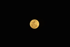moon (Patricia Regis) Tags: moon lua lunar supermoon luna nikond3200 nikon