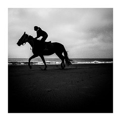 waverider (seba0815) Tags: ricohgrdiv grdiv monochrome waverider wave rider silhouette riding horse beach water northsea northholland sky light outdoor landscape horizon mood dark darkphotography square animal candid waves walk bw black blanco blanc noir nero white schwarzweis seba0815