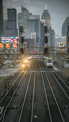 Night Runs (Patrick.Younger.Photography) Tags: trains night runs gene one go gotrain toronto horizon light natural ra realability photographer explore discover adventure capture moments beauty life breathtaking depth