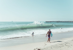 seal12 (David Behar) Tags: seal beach california skimboarding