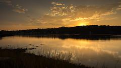 Sunset glow (hjuengst) Tags: usa sunset golden goldenlight goldenhour silhouette lake lakewinnipesaukee newhampshire meredith