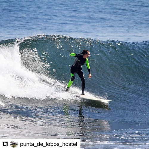 www.puntadelobossurfcamp.cl   #Repost @punta_de_lobos_hostel with  ・・・ #hostelpichilemu #surfhostel #meettheworld #puntadelobos www.puntadeloboshostel.cl 📷@who knows, but perfect shoot of our guest...