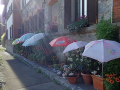 Original protection...EXPLORE #17.08.2015 (libra1054) Tags: parasol protection sombrilla parasole guardasol sonnenschirm schutz protezione protecciôn protecâo