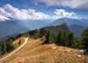 Stroppo, colle di Sampeyre (Anteriorechiuso Santi Diego) Tags: mountain cow piedmont stroppo sampeyre