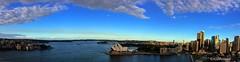 Opera House_Sydney_2014 (EricaMassa15) Tags: city house water architecture teatro bay opera theater sydney australia operahouse architettura baia teatrodellopera paramattariver pramatta