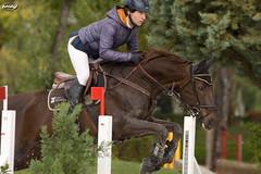 October Show Jumping CCVM (Myprofe) Tags: madrid horse salto countryclub rider equestrian showjumping hipica saltodeobstculos clubdecampovillademadrid ccvm saltodecaballo campeonatodesalto