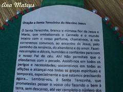 Escapulário Nossa Senhora Auxiliadora e Santa Terezinha (analuciamateus) Tags: santa artesanato fuxico senhora auxiliadora escapulário nossa religioso terezinha
