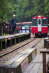 2015-10-25 11.51.32 (pang yu liu) Tags: travel train 10 oct 阿里山 旅遊 alishan 2015 火車 十月