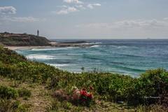 Norah Head, NSW Australia (AllportPhotography) Tags: ocean lighthouse beach water landscape memorial australia norahhead
