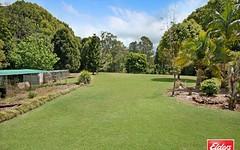 431 Hinterland Way, Knockrow NSW