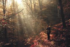 Stendhal Syndrome (Gure Elia) Tags: girl backlight forest contraluz woods photographer bosque euskalherria hayas navarra nafarroa bertiz baztán hazdeluz sthendalsyndrome