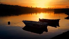 morning at Golden Horn. (adnangler) Tags: city morning light shadow sea sky sun reflection water sunrise turkey gold dawn exposure flickr peace magic istanbul goldenhorn owllight cockleboat nikond800 flickrturkey