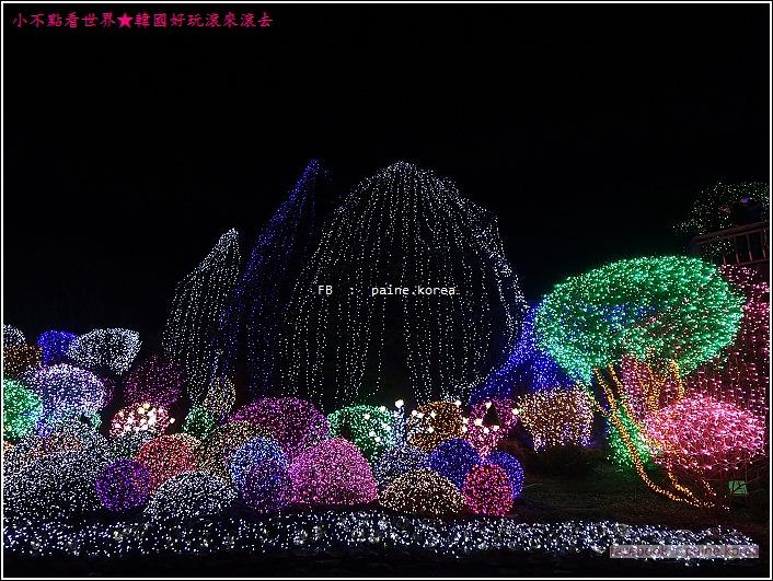 晨靜樹木園 五色星光庭園展 (48).JPG