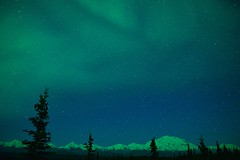 Denali, Stars and Aurora (emacan1905) Tags: alaska polarlichter denali mckinley nature aurora landscape scenery light stars
