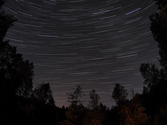 Starry night in Nanaimo (Tamas V) Tags: outdoor nature astronomy astrophotography astrophotograph canada nanaimo stars star trail trails startrail long exposure longexposure wide angle wideangle wa uwa ultra ultrawide fish eye fisheye bower rokinon samyang 75 75mm british columbia britishcolumbia vancouver island vancouverisland west coast pacific forest naturephotograph landscape naturephotography istock getty images gettyimages stockphotography stockphotograph stock photograph photography night dark black tree trees sky explore olympus omd em5 olympusomdem5 omdem5 micro four thirds mft m43 43 u43 microfourthirds fourthirds silhouette backlight