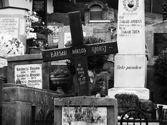 Cemetery, Brasov (Miranda Ruiter) Tags: cemetaries graveyard brasov romania gravestones blackandwhite details deadflowers angel crosses