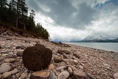 Lava Rock (scott_bohaty) Tags: nationalpark grandteton location state wyoming moran unitedstates us