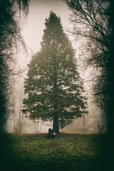 Lost in the Echo (MSPhotography-Art) Tags: landscape nebel nature mist germany alb outdoor fog misty natur wolken