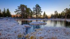 Frozen. (Reidar Trekkvold) Tags: straumsbotn xf1024ois cold frost fujifilm hã¸st ice is kvã¦fjord landscape natur nature nordnorge norway troms vann vinter water winter xt2 rim