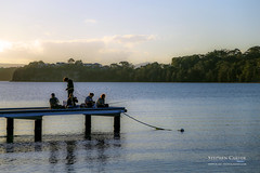 IMG_0498-2 (Scart Photography) Tags: valentine lakemacquarie