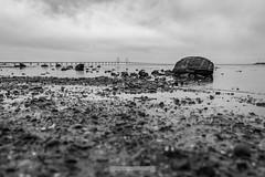 DSC00192 (grahedphotography) Tags: resundsbron resund oresund sweden swe denmark a7ii a7mk2 nature natur water ocean hav bridge beach blackandwhite grey malm limhamn