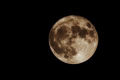 Supermoon (Imagonos) Tags: imagonos outdoor astro mond moon