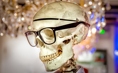 Christmas Shopping (what it's like) (DobingDesign) Tags: spoof satire skull bokeh shopping retail khiels shopwindow model glasses depthoffield fun weird odd obscure london shoppinginlondon waitinginthequeue character skeleton clever