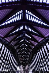 Modern airport (mathieuo1) Tags: lyon airport building modern symmetry architecture art abstract lines shape town city france europe explore travel flight plane dlsr nikon digital great angular under toward mathieuo street light illumination