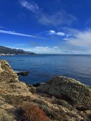 Point Lobos (nosha) Tags: