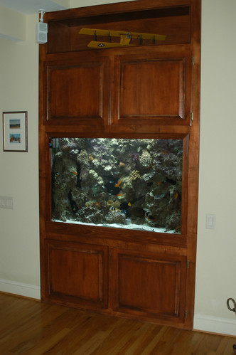 200 Gal Custom Living Reef - Private Residence - CT