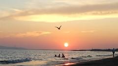 Towards evening (only_sepp) Tags: costa mare nuvola cielo tramonti toscana spiaggia paesaggio litorale follonica bagnasciuga httpswwwflickrcomphotostagsallaperto