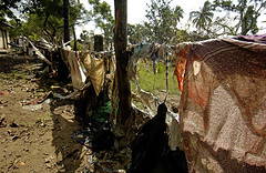 Barbed wire fence is draped with the clothing and bedding from the Kinniya District Hospital