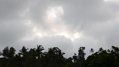 DSC_1331 (sootix) Tags: bali green temple ancient streams lush gunung pura kawi