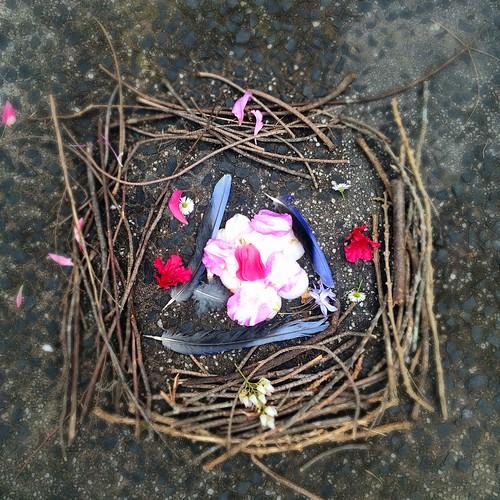 DB made a 'nest'.