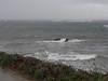 rain coming (the incredible how (intermitten.t)) Tags: sea españa rain menorca baleares minorca balearicislands illesbalears 2984 samesquida 20150930