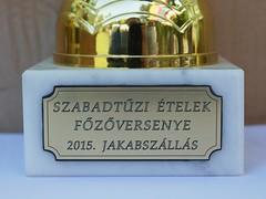 20150725-jakab-napi-vigassag-004-k