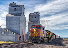 Train and Grain Elevator (Jerry Fornarotto) Tags: railroad food building tower barley rural train montana mt power feeding wheat country farming grain harvest engine rail storage warehouse transportation cooper crops tall preserved shipping bnsf grainelevator grainery granary deposit cooperative argriculture grainstorage elvator argricultural farmerselevatorcompany jerryfornarotto