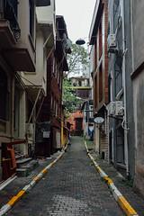 Istanbul streets (Rita.Paulo) Tags: street architecture buildings turkey walking alley outdoor streetlamp istanbul sidewalk istambul turquia