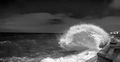 Wimereux - France - la marée du siècle 01/2015 (NICOLAS BELLO) Tags: light sunset sea sky blackandwhite bw cloud mer france beach nature monochrome beautiful landscape waves noiretblanc coats paysage