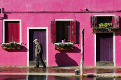 Burano - Pink Facade (Felix Cesare) Tags: travel pink blue venice windows red italy white building travelling green colors architecture facade buildings blog fisherman italian colorful doors colours candid streetphotography lifestyle facades lagoon blogger architectural colourful traveling murano venezia hdr burano travelblog traveler supertramp globetrotter colorfulhouses italianlifestyle travelphotography colorfulbuilding colorfulbuildings colorfulfacades fishermanhouse fishermenhouses yellowfacade greenfacade colorhouses travelblogger colorfulfacade whitefacade visitvenice pinkfacade travelporn visitvenezia