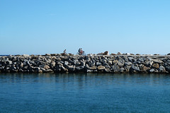 Lanzarote (gigiush (Emmanuel)) Tags: i miriamsphoto tz10 octnov2015