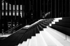 lines and shades. (P. Zimmer) Tags: light shadow urban blackandwhite bw stairs licht treppe stadt sw schatten scharzweiss sonyrx1 hyatthafen