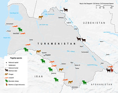 Flagship species of Turkmenistan (Zoi Environment Network) Tags: city sea mountain lake afghanistan ecology animal fauna river spread sheep iran map capital border deer leopard area antelope environment species caspian geography uzbekistan centralasia territory turkmenistan markhor saiga moneca onager amudarya bukharadeer