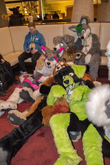 DSC_0032 (Acrufox) Tags: chicago illinois furry midwest december ohare rosemont convention hyatt regency 2014 fursuit furfest fursuiting acrufox mff2014