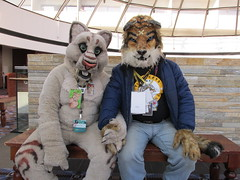 IMG_0413 (2) (raiderwolf22) Tags: illinois midwest rosemont hyatt regency fursuit furcon furfest