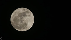 Supermoon - Nov 2016 (raveclix) Tags: raveclix india canon sigma canon5dmarkiii sigma150500mmf563apodgoshsm bangalore karnataka moon supermoon