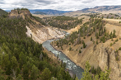 Winding River (E.K.111) Tags: nature nationalpark river outdoors yellowstone